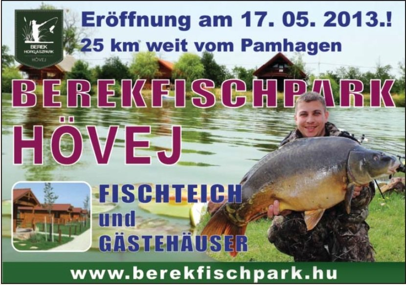 berekfischpark.jpg