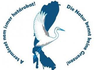 logo_ft.jpg